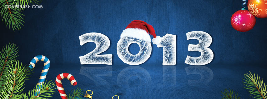 new year 2013 in santa's hat facebook cover
