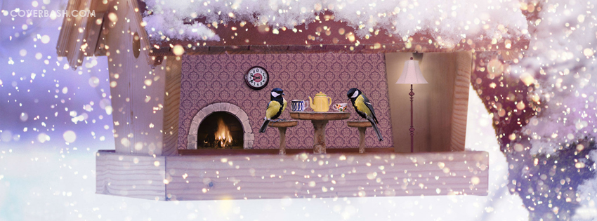 birds dating facebook cover