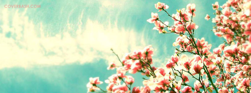 sky flowers facebook cover