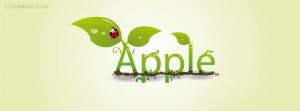 apple leaf ladybug facebook cover
