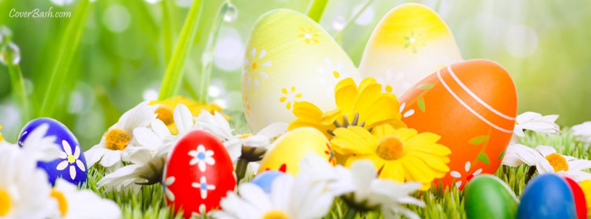 fresh easter eggs :) facebook cover