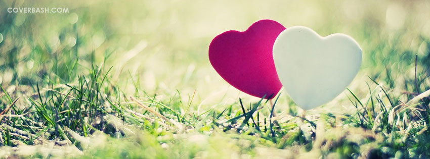white and pink heart facebook cover