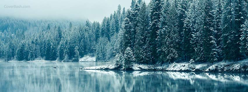 winter forest facebook cover